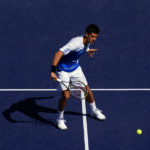 Novak Djokovic (Wikimedia Commons)